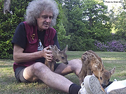 Queen Guitarist Brian May King of His Wildlife Refuge
