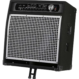 SWR® WorkingPro™ 15 200W Bass Combo Amp