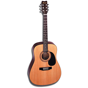 Hohner HW220 Dreadnought Acoustic Guitar