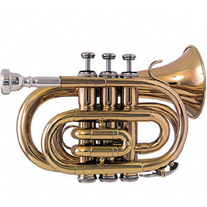 RS Berkeley PT624 Elite Series Pocket Trumpet