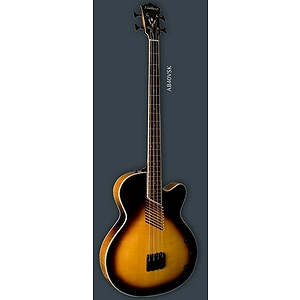 Washburn AB40 Acoustic-Electric Bass Guitar - with gig bag
