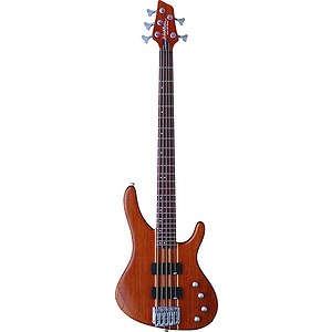 Washburn FORCE5 5-string Electric Bass Guitar - with Gig Bag