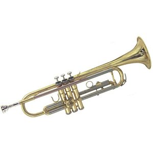Roy Benson Deluxe Trumpet Outfit