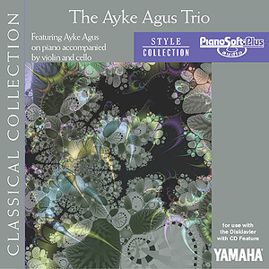 The Ayke Agus Trio