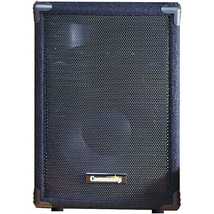 Community MVP12 2-way 12-inch Loudspeaker