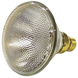 PAR38 Replacement Lamp - 120V, 90W