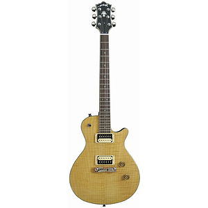 Arbor Select Arched Top Electric Guitar