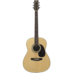 "JB Player 39"" Folk-size Steel-string Acoustic Guitar"
