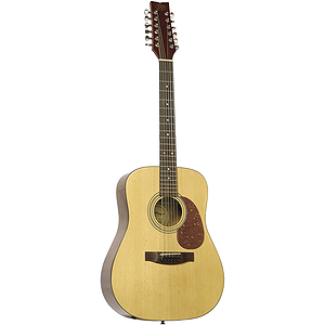 JB Player 12-string Acoustic Guitar