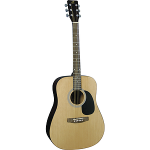 J. Reynolds 65 Dreadnought Guitar - Natural