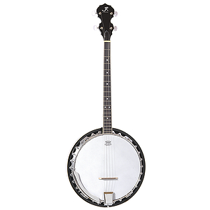 J. Reynolds JR900T 4-String Banjo