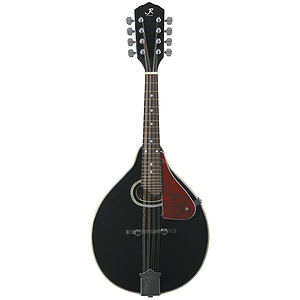 J. Reynolds JRMAN30 Mandolin  - Black