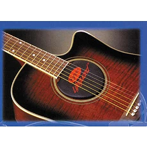 Kyser Lifeguard Guitar Humidifier - Classical Guitar