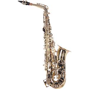 Lauren Beginner Alto Saxophone Outfit