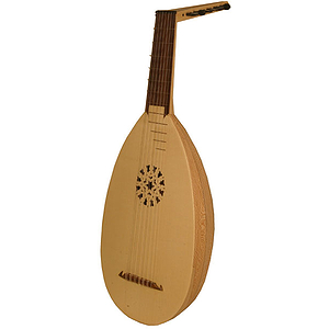 7-Course Lute, Lacewood, Taylor