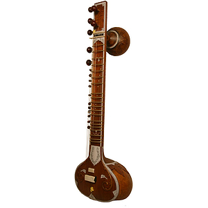 Sitar, Standard, Light Padded Nylon Case