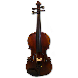 Erwin Otto 1240R European Crafted Advanced Student Violin Outfit