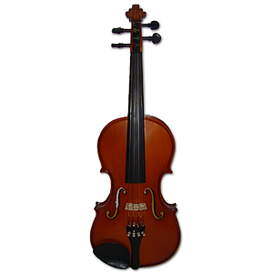 Erwin Otto 8015 European Crafted Student Violin Outfit - 1/2 size