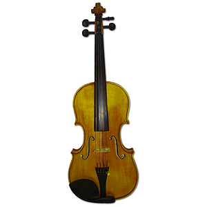 Erwin Otto 8022 Intermediate Student Violin Outfit