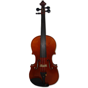 Erwin Otto 8055 Advanced Student Violin Outfit