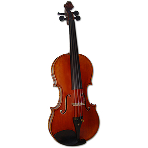 Erwin Otto 8066 Deluxe Violin Outfit