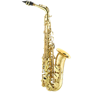 RS Berkeley University Series Beginner Alto Saxophone Outfit