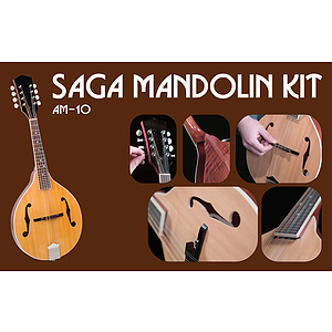 Saga AM-10 Make-Your-Own A-model mandolin Kit