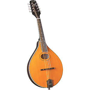 Kentucky KM-172 Artist A-Model Mandolin - Honey Amber