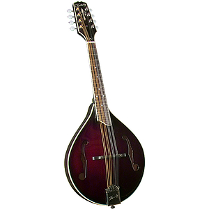 Kentucky KM-254 Artist A-Model Mandolin - Burgundy