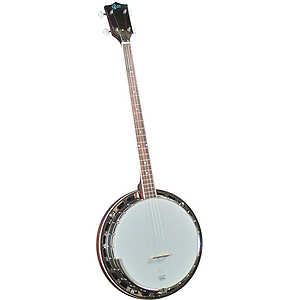 Rover RB-25P Resonator Plectrum Banjo