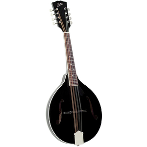 Rover RM-50B All Solid A-model Mandolin - Glossy Black