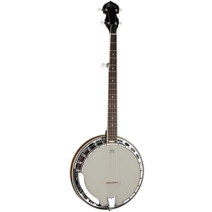 Washburn B11 5-string Banjo with case