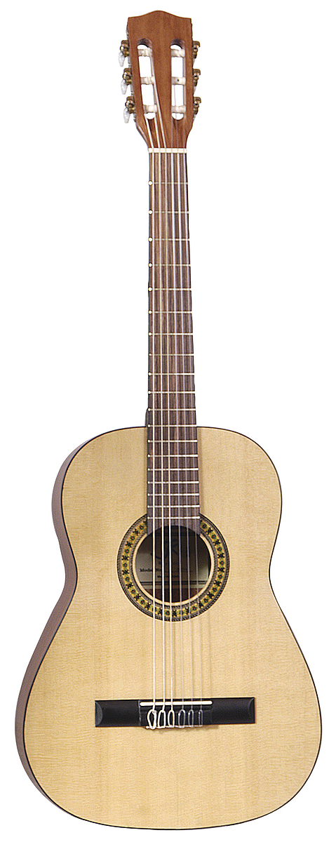 Nylon String Acoustic Guitar